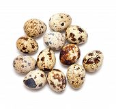 image of quail  - spotted brown quail eggs isolated on white  - JPG