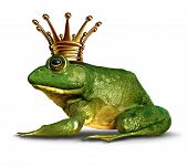 image of fairy  - Frog prince side view concept with gold crown representing the fairy tale symbol of change and transformation from an amphibian to royalty - JPG