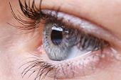 pic of eye-wink  - Human eye close - JPG
