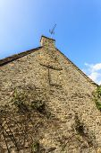 picture of english ivy  - Architecture detail - JPG