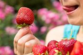 foto of strawberry blonde  - Close-up of a fresh strawberry in the hand of a woman
