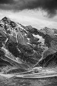 stock photo of edelweiss  - Grossglockner High Alpine Road - JPG