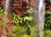 picture of tropical rainforest  - High waterfall in red rock cliff tropical African rainforest - JPG