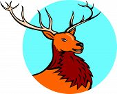 foto of deer head  - Illustration of a red stag deer buck head facing side set inside circle on isolated background done in cartoon style - JPG