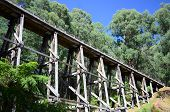 foto of trestle bridge  - The old wooden trestle rail bridge at Noojee Victoria - JPG