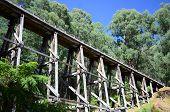 image of trestle bridge  - The old wooden trestle rail bridge at Noojee Victoria - JPG