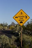 pic of tortoise  - In bicycle friendly Saguaro National Park a Share the Road sign warns that roadway must be shared by cars bicyclists walkers and desert wildlife including slow moving tortoises - JPG