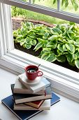 stock photo of coffee coffee plant  - Reading Time Concept  - JPG