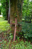 stock photo of graveyard  - brown old wooden cross in a graveyard - JPG
