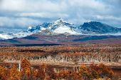 stock photo of tierra  - Autumn in Patagonia - JPG