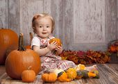 foto of gourds  - Adorable baby girl sitting next to pumpkins and gourds and other fall decor - JPG