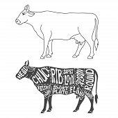 image of beef shank  - Beef cuts diagram - JPG