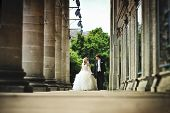 picture of married  - wedding day of  happy just married newlyweds - JPG