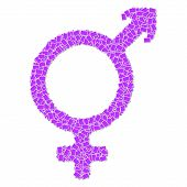 picture of transgendered  - transgender sign use for the meaning of gay - JPG