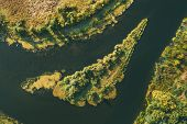 Aerial View Green Forest Woods On Small River Island In Summer Landscape. Top View Of Beautiful Euro poster