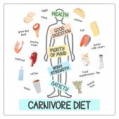 Vector Image Illustration Of Carnivore Diet Products And Man Silhouette With Inscriptions About His  poster