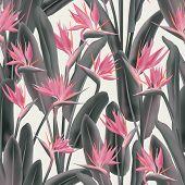 Strelitzia Reginae Tropical Flower Vector Seamless Pattern. Jungle Exotic Tropical Plant Fabric Desi poster