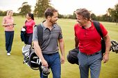 Two Mature Couples Playing Round Of Golf Carrying Golf Bags Along Fairway poster