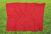 Picnic Background. Red Checkered Picnic Cloth On Blurred Sun-flooded Lush Grass With Focus On Napkki poster
