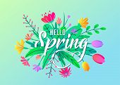 Hello Spring Greeting Word Text Vector Background With Flat Simple Bloom Flowers, Leaves Isolated On poster