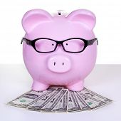 stock photo of piggy  - Piggy bank with money - JPG