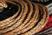 stock photo of buckaroo  - rope  - JPG