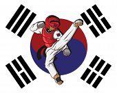 image of sparring  - create cartoon taekwondo martial art - JPG