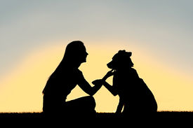 stock photo of pal  - A silhouette of a girl sitting outside training and playing with her German Shepherd dog as he shakes her hand isolated in front of a sunset in the sky - JPG