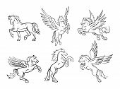 stock photo of winged-horse  - Horse Collection Editable  - JPG