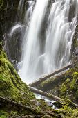 pic of priceless  - close up of national creek falls in oregon with slow flowing water over the rocks and logs - JPG