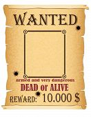Announcement Wanted Criminal Poster Vector Illustration poster