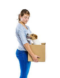 pic of jack-in-the-box  - Young woman with her cute parson russell terrier dog in cardboard box moving - JPG