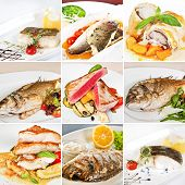 picture of sole  - Fish dishes collage including lemon sole baked sea bass white atlantic cod dorado tuna steaks with vegetables grouper fillet and barramundi fillet - JPG