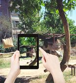 Постер, плакат: Tourist Taking Photo Tandoor Stove In Urban Yard