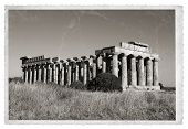 picture of greek  - Vintage photos with The largest Greek temple in Selinus Sicily - JPG