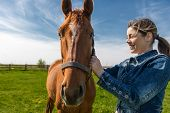 image of beautiful horses  - Happy beautiful brunette taking care of her domestic horse outdoors - JPG