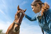 foto of brown horse  - Young brunette woman taking care of her brown horse - JPG