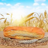 stock photo of baguette  - Freshly baked baguette with wheat on the table - JPG