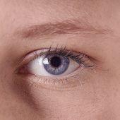 image of human eye  - close - JPG