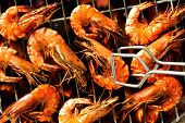 pic of tiger prawn  - Grilled prawns on the grill - JPG