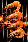 picture of tiger prawn  - Grilled prawns on the grill - JPG
