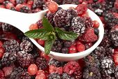 picture of berries  - White porcelain bowl with frozen berries and mint leaves stands in the midst of other berry fruits - JPG