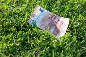 image of depreciation  - 10 euro banknote lying on the grass - JPG