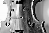 stock photo of violin  - Black and white distressed photo of old antique violin - JPG