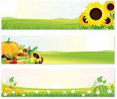 pic of farm landscape  - Beauty Thanksgiving Nature banners set  - JPG