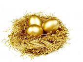 image of priceless  - Gold egg in the gold nest - JPG