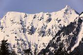 Постер, плакат: Снежная гора Chikamin пик Snoqualme перевал Уэнатчи Национальный лес Вашингтон