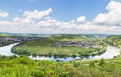 Moselle Loop At Trittenheim Panorama Germany Picture Panorama poster