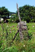 Thick, Wooden Fence Post Has Huge Rusty Nail Protruding And A Stick.  Pink Wildflowers Called Purple poster