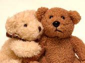pic of teddy-bear  - two bears - JPG